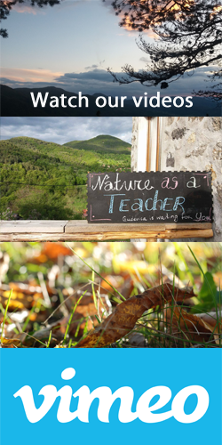 Nature as a teacher – eco-centric development in Youth work Learning for change