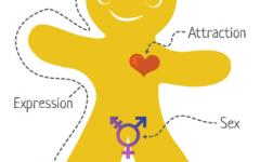 Gender Matters – a manual on addressing gender-based violence affecting young people Learning for change